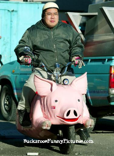 Ride My Hog